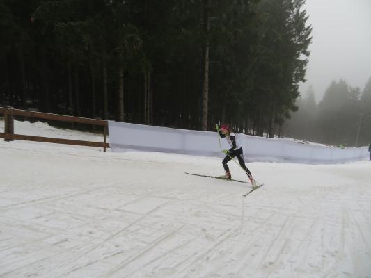 Luisa Krause